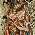 Ett anatomiskt hjärta med tänder och svart smörja