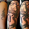 En tribal som täcks av ett träd